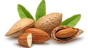 almond-kernels